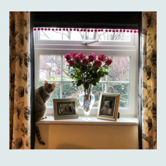 Curtain and roman blind combination window treatment for a study in hues of charcoal and grey with pops of fuchia pink.